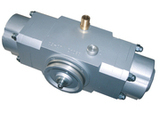 Vacuum piston pump TPP-2 provided with a pulley